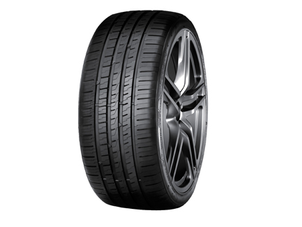 neumaticos 225/55 R17 101W SPORT D DURABLE